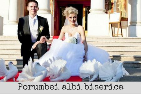 porumbei albi cununie biserica bucuresti