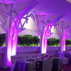 Lumini arhitecturale / ambientale nunta / botez  / evenimente bucuresti