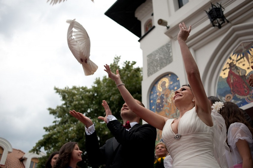Porumbei nunta pret