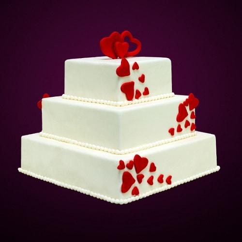 tort nunta tn11