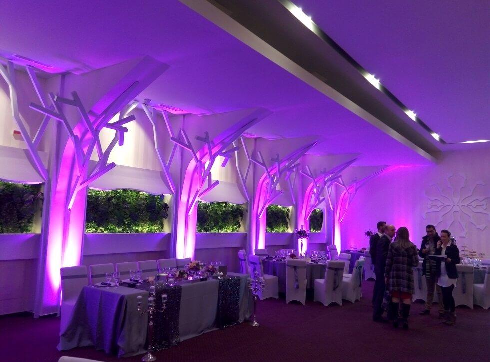 organizare nunta lumini arhitecturale